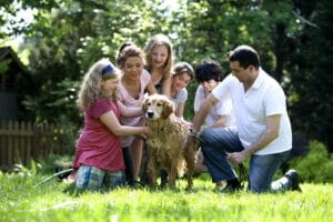 20 best dog breeds for families